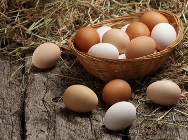 Mơ thấy trứng gà đánh con số mấy đảm bảo chắc ăn?